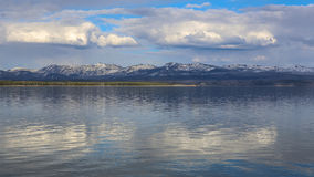 lake yellowstone Royaltyfria Bilder