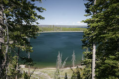 lake yellowstone Arkivbild