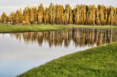 Lake in Yellowstone National Park. Stock Image