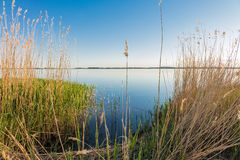 Lake in Zempin on the island Usedom Royalty Free Stock Photography