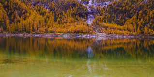 The lake Zhara with perfect reflection  Stock Image