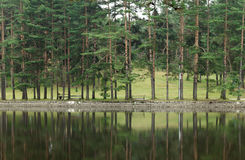 Lake, Zlatibor Serbia. Pond on Zlatibor Mountain in Serbia and promenade on the other side with people resting on benches Stock Images