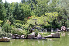 Lake at Zoo. A lake bordered by boulders at the Albuquerque Zoo Stock Photos