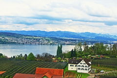 Lake Zurich view Switzerland. View of  Zurichsee lake shore, Zurich city urbanized area Switzerland Stock Images