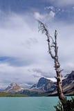 Lake4 Fotos de archivo libres de regalías