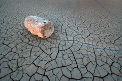 Lakebed. Log in dry lake bed Royalty Free Stock Image