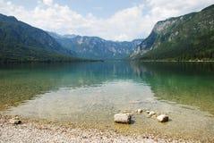 LakeBohinj kust, Slovenien Arkivfoto