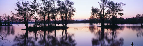 LakeFausse Pointe delstatspark på solnedgången royaltyfri fotografi
