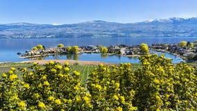 Lakefrontindelning i underavdelningar på Okanagan sjön västra Kelowna British Columbia Kanada arkivfoton