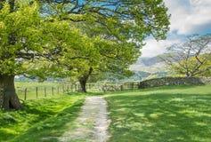 Lakeland path Royalty Free Stock Photography