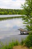 Laken i parken Royaltyfria Bilder