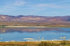 Pristine Lake Arkivfoto