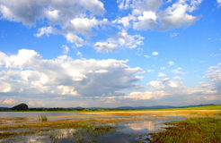 Lakes. The lakes in the grassland Stock Photography