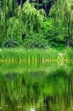 Lakes stock photos