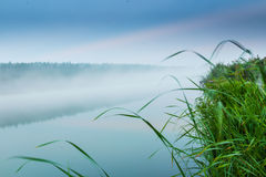 Lakes and the early morning fog. Mystic fog is running on the lake in the cold summer morning Royalty Free Stock Photography