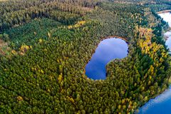 Lakes in forest, aerial photography stock photo