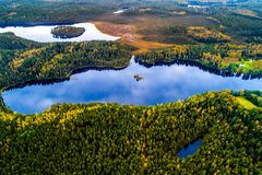 Lakes in forest, aerial photography royalty free stock photos
