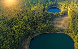 lakes in forest aerial view royalty free stock images