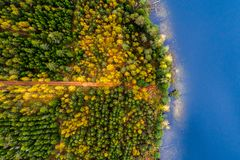 Lakes in forest, top view stock photo