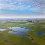 Lakes in meadow, top view Royalty Free Stock Images
