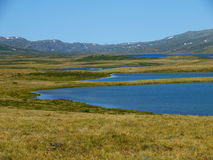Lakes of plateau Ukok, mountain Altai Royalty Free Stock Images