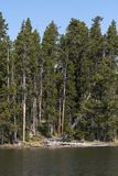 Lakes and rivers in Yellowstone National Park. In Wyoming royalty free stock image