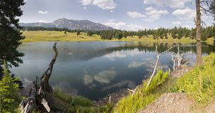 Lakes and rivers in Yellowstone National Park. In Wyoming stock photos