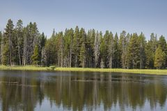 Lakes and rivers in Yellowstone National Park. In Wyoming stock photography