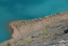 Lakes in  Tibet. A proup of sheep  are standing besides Yanmdrok lake in Gyantse,Tibet Royalty Free Stock Photography