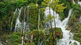 Lakes with waterfall in Croatia, Europe. Location: Plitvice, National Park Plitvicka jezera. stock video footage