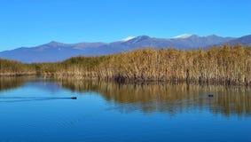 Lakescape Photo libre de droits