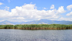 Lakescape, Small Prespa Lake. View of the small Prespa lake and the mountains that surround it royalty free stock photo