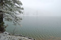 lakeshore снежно стоковое изображение rf