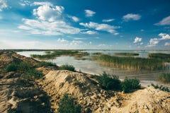 Lakeshore Стоковое Изображение