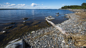 Lakeshore in Finland. Beautiful clear skies on a lakeshore in Finland Stock Image