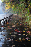 Lakeshore. A plank road beside the lake Stock Images