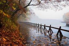 Lakeshore. A plank road beside the lake Stock Photo