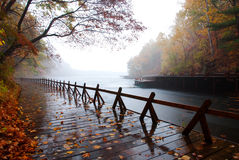 Lakeshore. A plank road beside the lake Royalty Free Stock Images