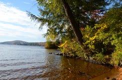 Lakeshore sikt av hösten i Adirondacks Royaltyfri Bild