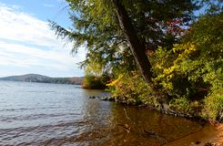 Lakeshore vista dell'autunno in Adirondacks Immagine Stock Libera da Diritti