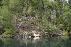 Lakeshore in a wilderness area Royalty Free Stock Photo