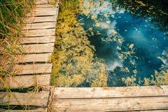 Lakeshore z drewnianym molem Obraz Stock