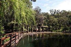Lakeside Royaltyfria Foton
