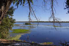 lakeside Royalty-vrije Stock Foto's