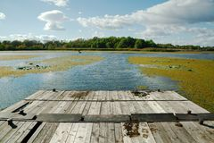 lakeside royalty-vrije stock afbeelding
