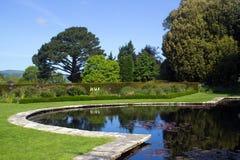 lakeside zdjęcia royalty free