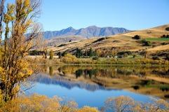 Lakeside autumn. Beautiful sunlight, blue sky, yellow leaves & super reflection Stock Photos