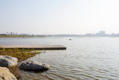 Lakeside boulders and planked platform in sunny winter afternoon. Tianfu New Area,Chengdu,China royalty free stock photo