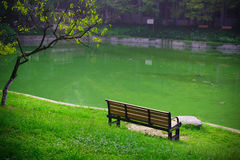 Lakeside of the campus, USTC, China Stock Image