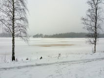 Lakeside i vinter Royaltyfria Foton